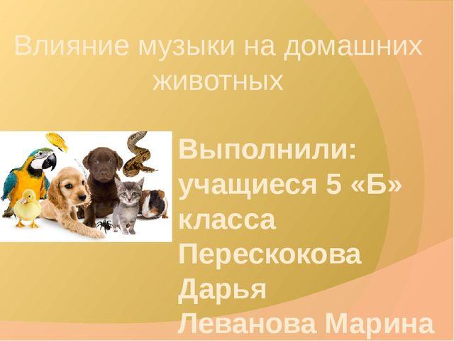 Влияние музыки на домашних животных Выполнили: учащиеся 5 «Б» класса Перескок...