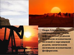 Недра Алжира богаты топливными ресурсами - нефтью, газом, рудными полезными и