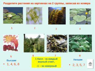 Разделите растения на картинках на 2 группы, записав их номера 1, 4, 6, 8 2,