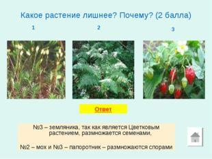 Какое растение лишнее? Почему? (2 балла) 1 2 3 №3 – земляника, так как являет
