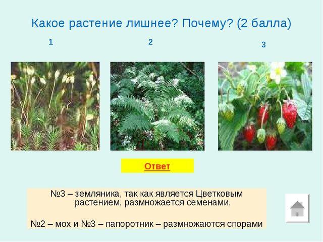 Какое растение лишнее? Почему? (2 балла) 1 2 3 №3 – земляника, так как являет...