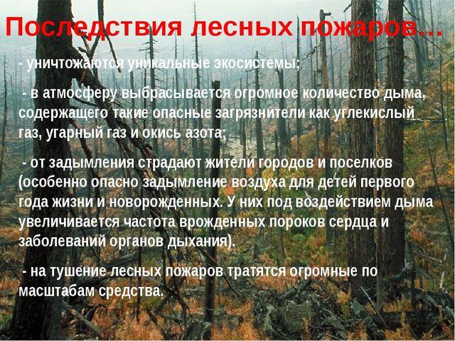 Последствия лесных пожаров… - уничтожаются уникальные экосистемы; - в атмосфе...