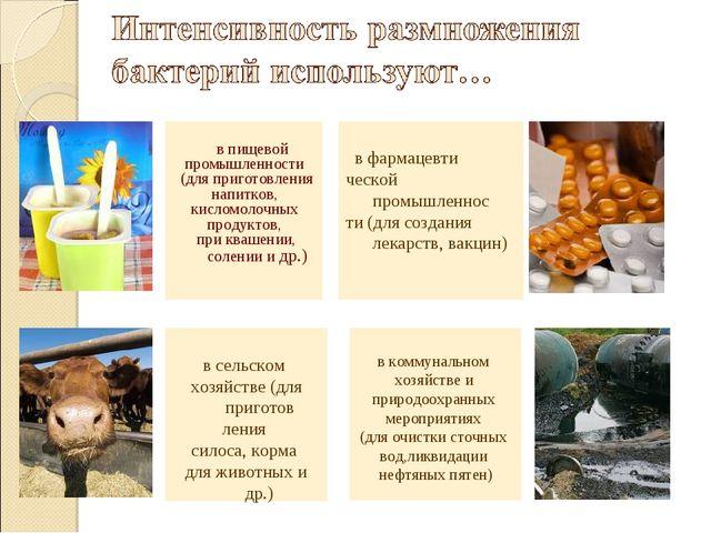 в пищевой промышленности (для приготовления напитков, кисломолочных продукто...