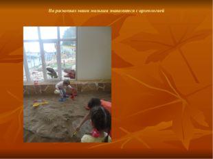 На раскопках наши малыши знакомятся с археологией