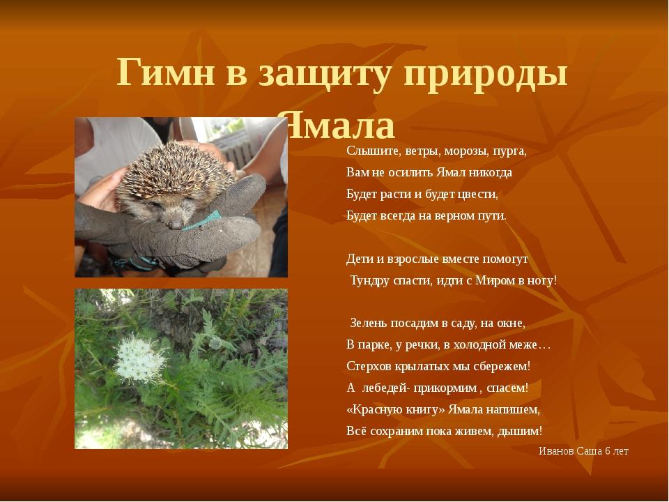 Гимн в защиту природы Ямала Слышите, ветры, морозы, пурга, Вам не осилить Ям...