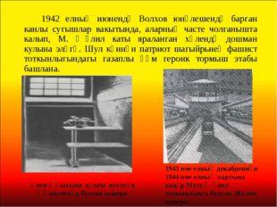1942 елның июнендә Волхов юнәлешендә барган канлы сугышлар вакытында, аларн