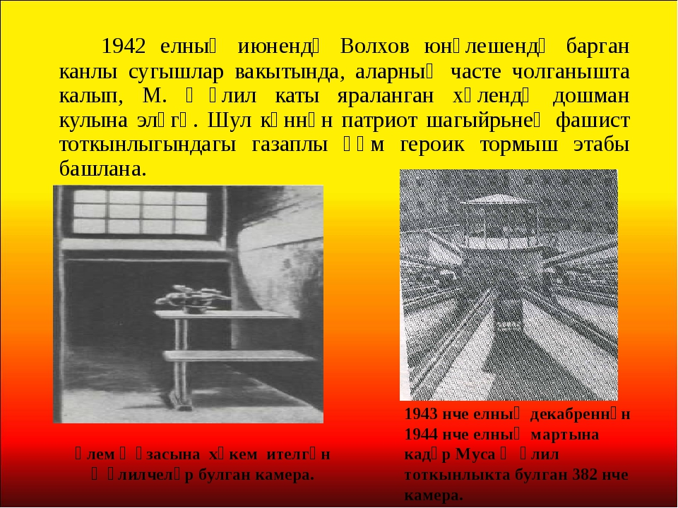 1942 елның июнендә Волхов юнәлешендә барган канлы сугышлар вакытында, аларн...