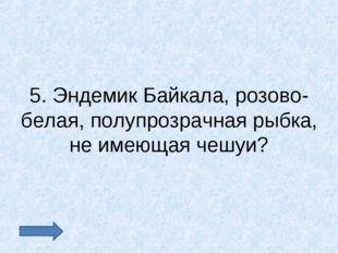 5. Эндемик Байкала, розово- белая, полупрозрачная рыбка, не имеющая чешуи?