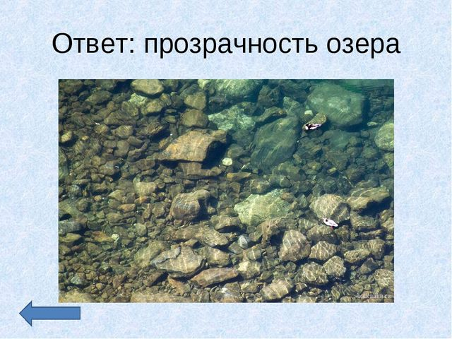 Ответ: прозрачность озера