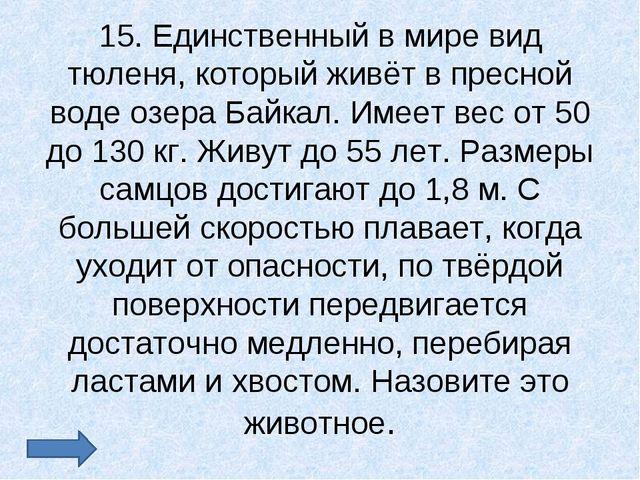 15. Единственный в мире вид тюленя, который живёт в пресной воде озера Байкал...