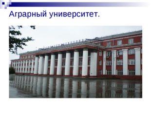 Аграрный университет.