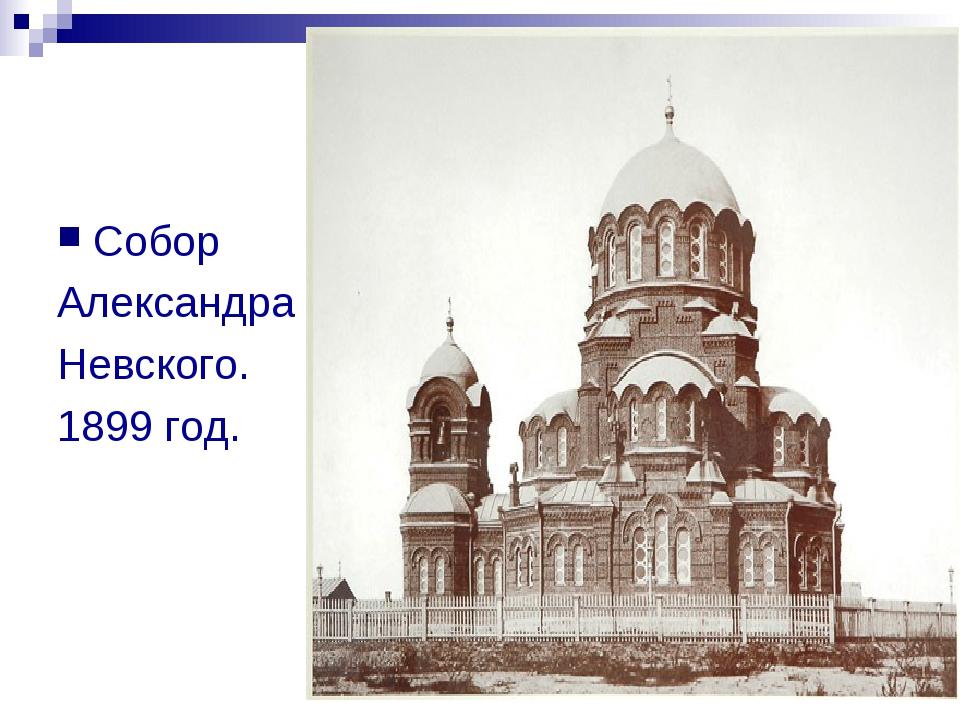 Собор Александра Невского. 1899 год.