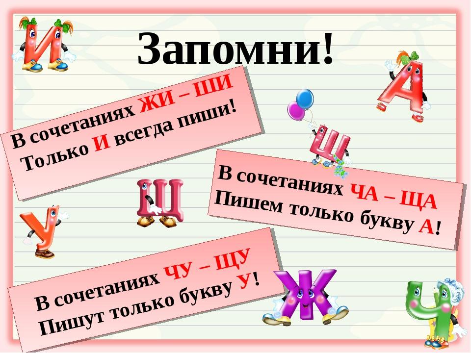 орфограммы по русскому в картинках выставках, несмотря