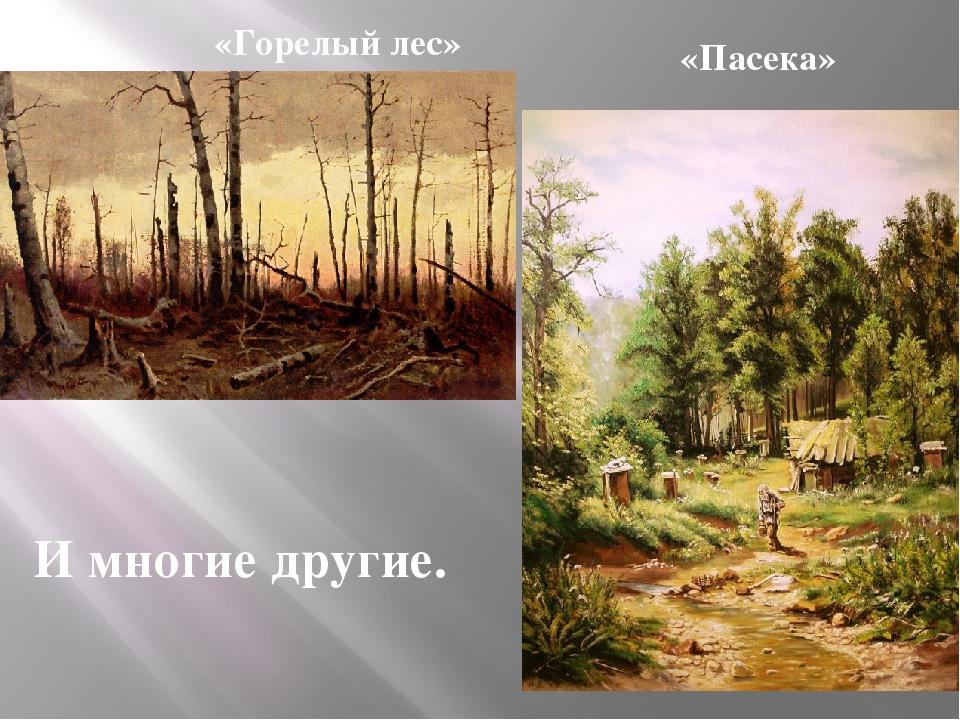 «Горелый лес» «Пасека» И многие другие.
