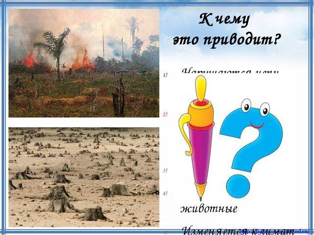 Нарушаются цепи питания Уменьшается количество кислорода Разрушается почва Ги...
