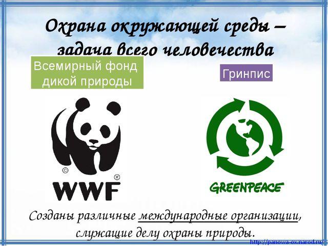 Созданы различные международные организации, служащие делу охраны природы. Ох...