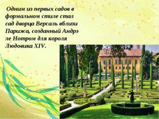 Одним из первых садов в формальном стиле стал сад дворца Версаль вблизи Пари