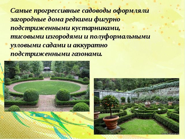 Самые прогрессивные садоводы оформляли загородные дома редкими фигурно подстр...