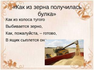 «Как из зерна получилась булка» Как из колоса тугого Выбивается зерно, Как, п