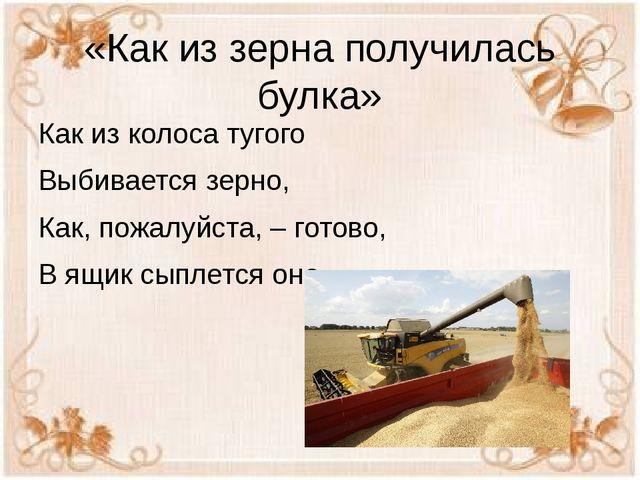 «Как из зерна получилась булка» Как из колоса тугого Выбивается зерно, Как, п...