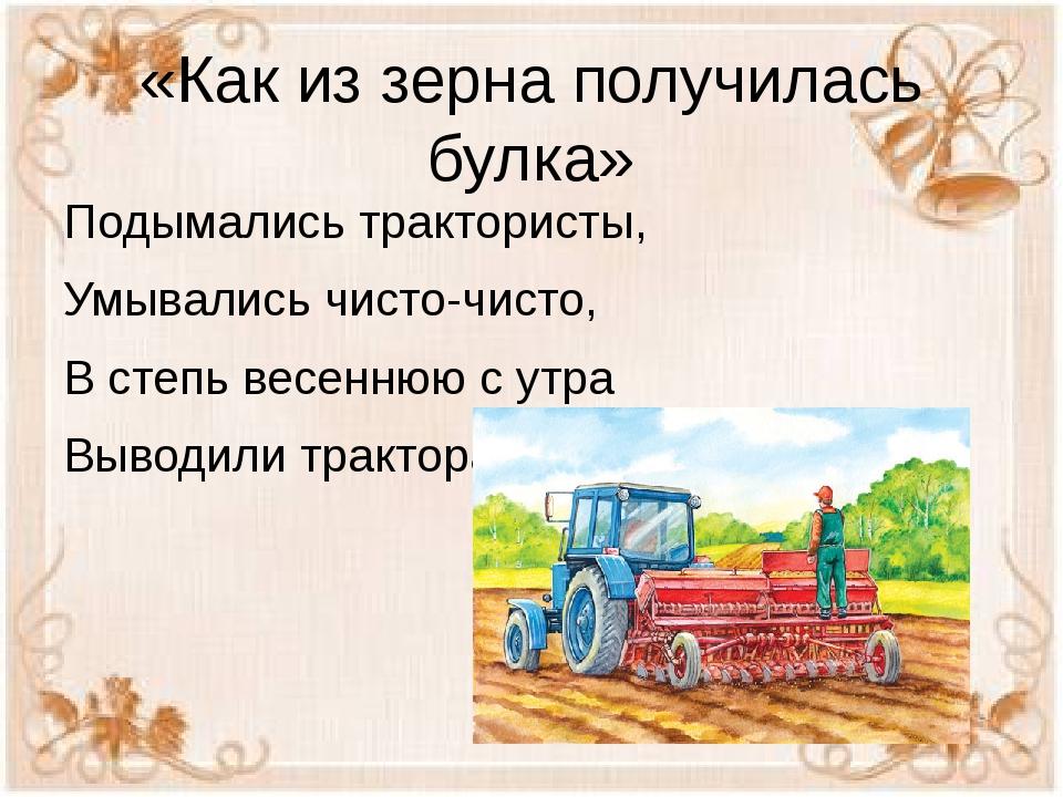 «Как из зерна получилась булка» Подымались трактористы, Умывались чисто-чисто...