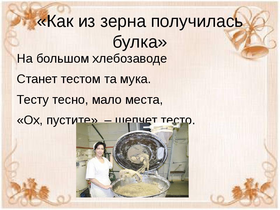 «Как из зерна получилась булка» На большом хлебозаводе Станет тестом та мука....