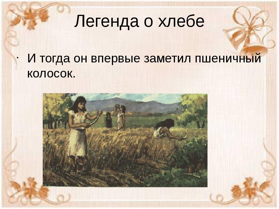 Легенда о хлебе И тогда он впервые заметил пшеничный колосок.