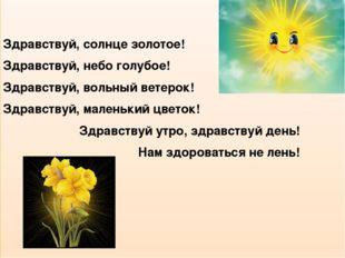 Здравствуй, солнце золотое! Здравствуй, небо голубое! Здравствуй, вольный ве