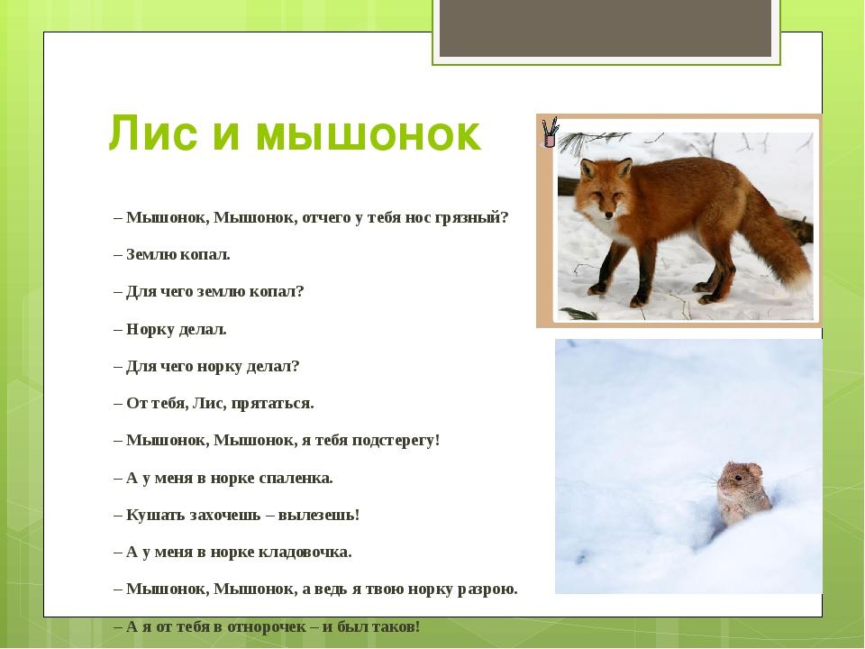 Лис и мышонок – Мышонок, Мышонок, отчего у тебя нос грязный? – Землю копал. –...