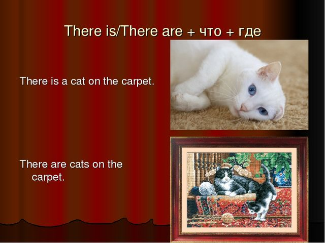 There is/There are + что + где There is a cat on the carpet. There are cats o...