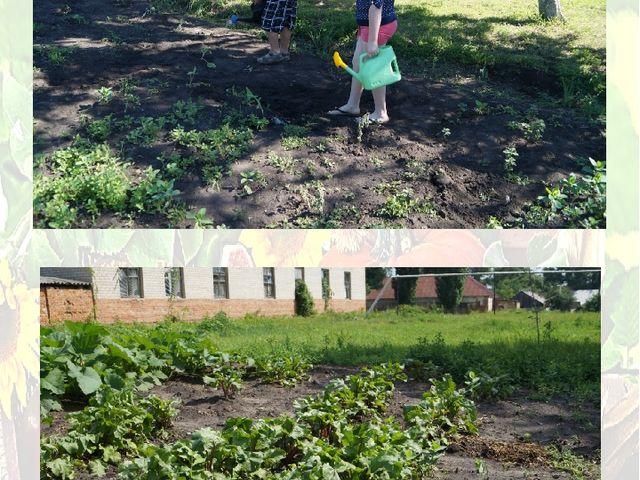 И тогда наш огород Расцветёт и оживёт