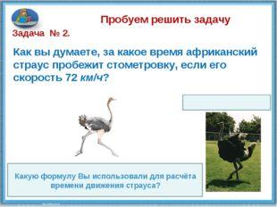 Пробуем решить задачу Как вы думаете, за какое время африканский страус проб