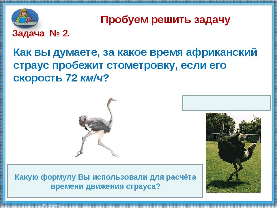 Пробуем решить задачу Как вы думаете, за какое время африканский страус проб...