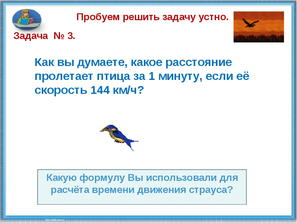 Пробуем решить задачу устно. Как вы думаете, какое расстояние пролетает птица...
