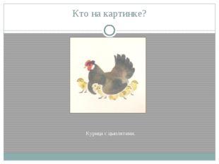 Кто на картинке? Курица с цыплятами.