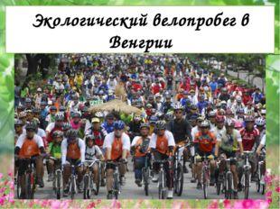 Экологический велопробег в Венгрии