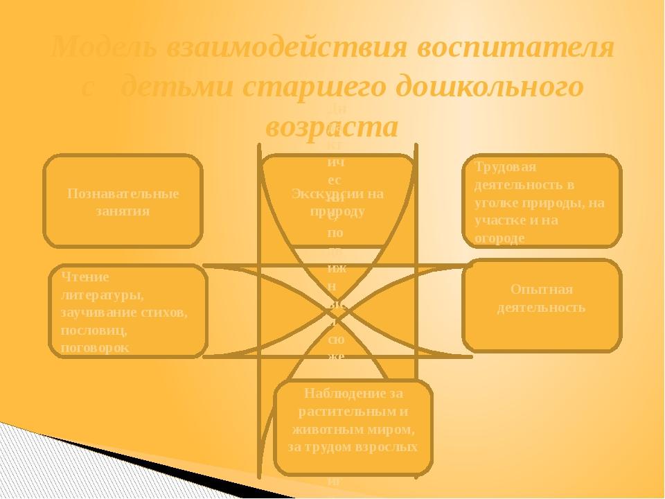 Познавательные занятия Модель взаимодействия воспитателя с детьми старшего до...