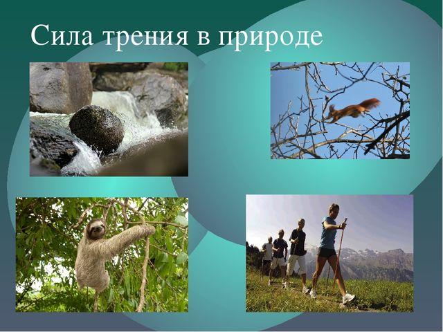 Сила трения в природе