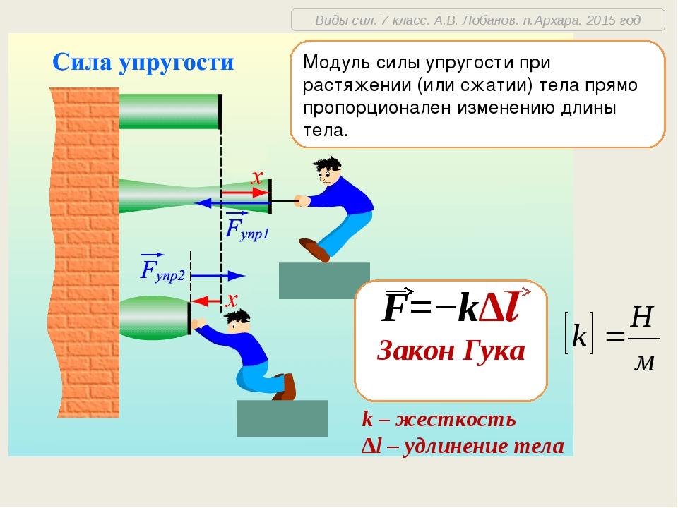 F=−k∆l Закон Гука k – жесткость ∆l – удлинение тела Модуль силы упругости при...