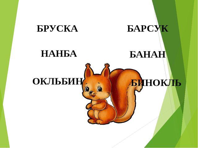 БРУСКА БАРСУК НАНБА БАНАН ОКЛЬБИН БИНОКЛЬ