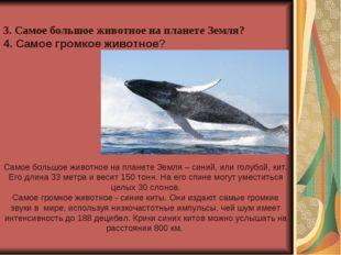 3. Самое большое животное на планете Земля? 4. Самое громкое животное? Самое