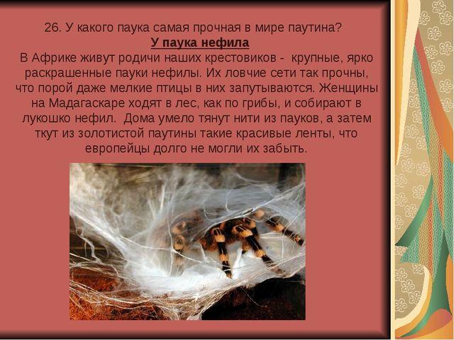 26. У какого паука самая прочная в мире паутина? У паука нефила В Африке живу...