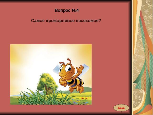 Вопрос №4 Самое прожорливое насекомое? база