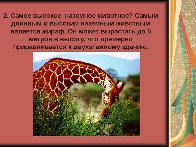 2. Самое высокое наземное животное? Самым длинным и высоким наземным животным...