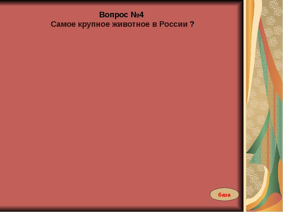 Вопрос №4 Самое крупное животное в России ? база