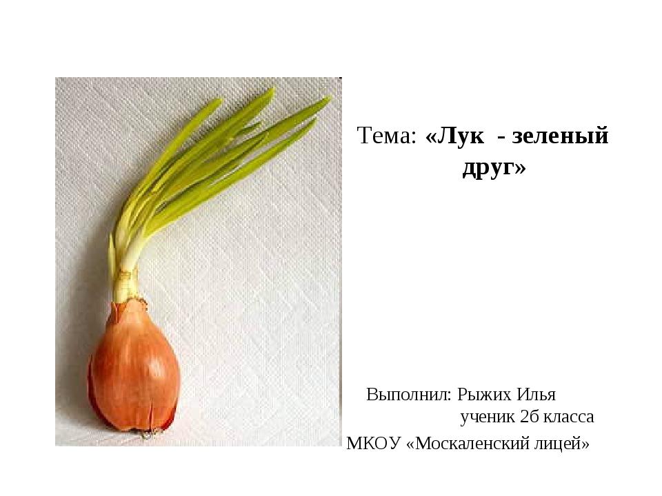 Тема: «Лук - зеленый друг» Выполнил: Рыжих Илья ученик 2б класса МКОУ «Моска...