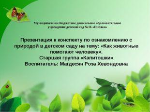 Презентация к конспекту по ознакомлению с природой в детском саду на тему: «К