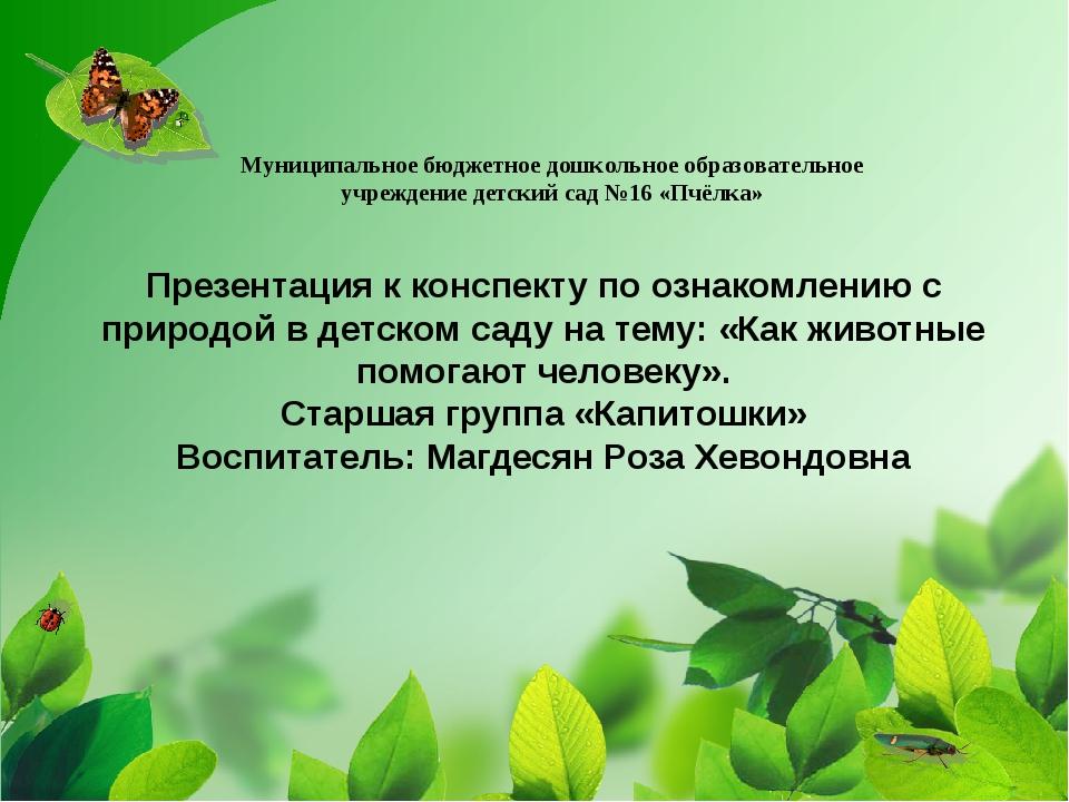 Презентация к конспекту по ознакомлению с природой в детском саду на тему: «К...