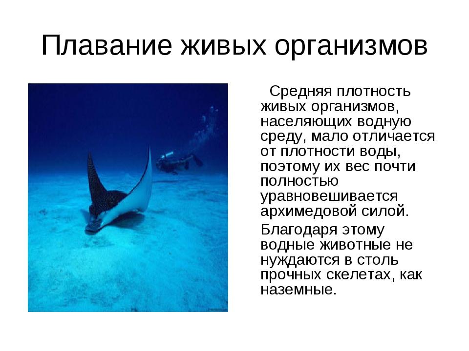 Плавание живых организмов Средняя плотность живых организмов, населяющих водн...