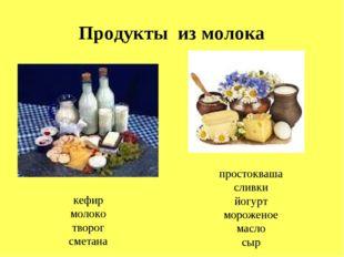 Продукты из молока кефир молоко творог сметана простокваша сливки йогурт моро